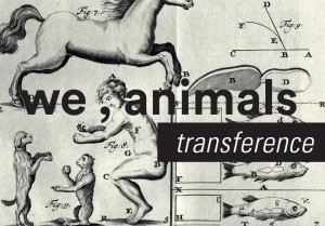 weanimals_transference